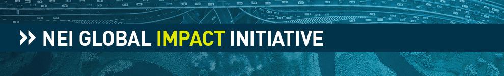 NEI Global Impact Initiative